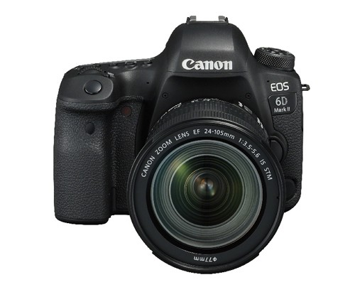 Canon EOS 6D MKII & EF 24-105 IS STM